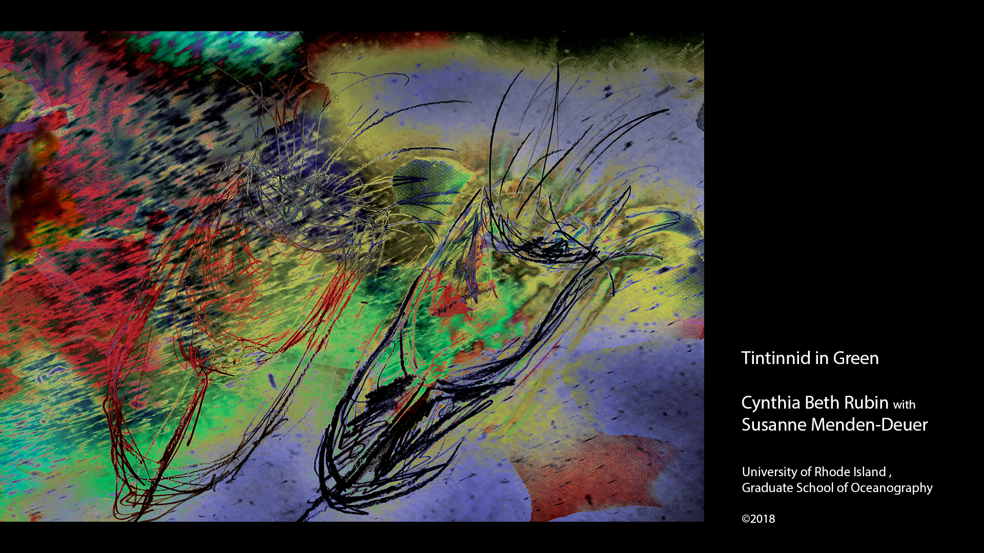 Our lives as humans are bound to the rarely seen and the invisible microscopic life of the ocean.  Constructed as nearly abstract paintings, these works invite the viewer to swim with the plankton, the jellyfish, and the krill that make life on our planet sustainable. Raw source material is from Antarctica and the North Atlantic, as well as microscopic captures of plankton from Narragansett Bay, interpreted both digitally and in hand drawings.  The works are collaborations between digital artist Cynthia Beth Rubin and Oceanographers in the Menden-Deuer lab at the University of Rhode Island, who gathered the raw imagery from oceans near and far.